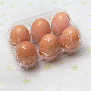recyclable wholesale clear PVC plastic packaging egg container pictures & photos
