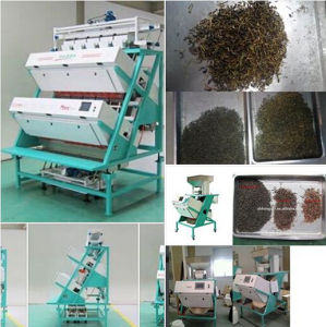 High Pixel Huge Capacity Best Quality True Color CCD Tea Color Sorter; Tea Grading and Seperatingmachinery pictures & photos