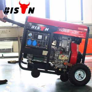 Bison (China) BS7500dce (H) 6kw 6kVA Ce Certificated 1 Year Warranty Small MOQ Diesel Generator Welding Machine pictures & photos
