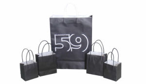 Paper Shopping Bag/Paper Bag/Shopping Bag Wholesale/Handbags pictures & photos