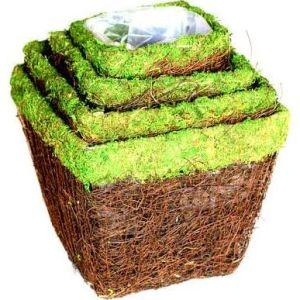Fuda Factory Direct Sale Moss Square Planter pictures & photos
