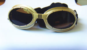 Gold Pet Glasses, Dog Sunglasses pictures & photos