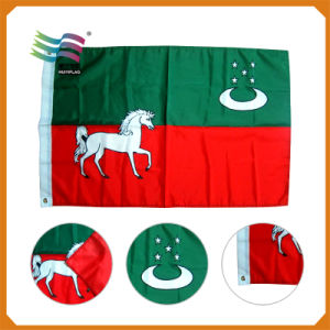 Promotion Printing Polyester Display Advertising National Flag (HY0386) pictures & photos