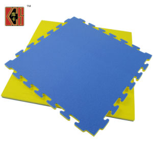 Interlocking Foam XPE Gym Mats in Martial Arts pictures & photos