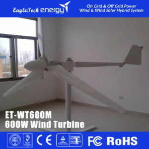 600W Wind Turbine Wind Power Generator L Wind Power System