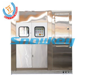 China Top 1 Plate Ice Machine pictures & photos