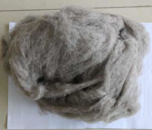 100% Combed Yak Wool /Cashmere/Camel Wool/ Yak Raw Material/Fabric/Textile pictures & photos