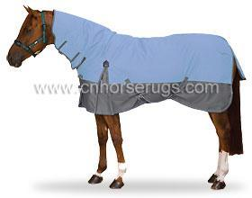 Horse Rug-620013 pictures & photos