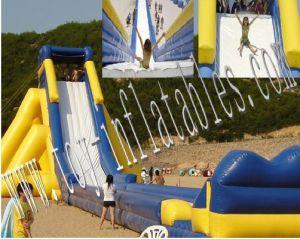 Giant Inflatable Slide (Slide-A8)