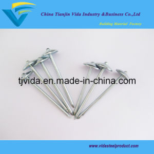 Roofing Screw Nails (11G) pictures & photos