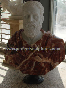 Head Statue Bust Sculpture with Stone Marble Granite Sandstone (SY-S236) pictures & photos