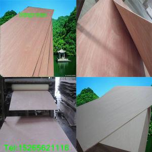 Poplar Plywood, Okoume/Bintangor Veneer Door Skin Plywood