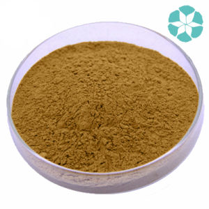 Cat′s Claw Extract / Ranunculus Ternatus Extract pictures & photos