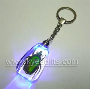 Flashlight Insect Amber Key Ring