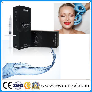 Reyoungel Injection Hyaluronic Acid Dermal Filler for Lip Fullness (2.0ml) pictures & photos