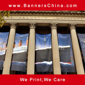 PVC & Vinyl Hanging Flag Banner pictures & photos