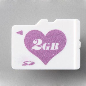 Price for 2GB Microsd Memory Card (GC-M017) pictures & photos