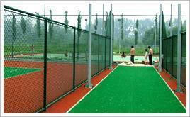 Metal Wire Welded Fencing Products for Garden, Stadium (DJ-062)