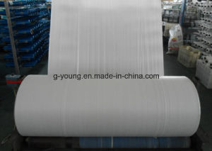 White PP Woven Flat Fabric