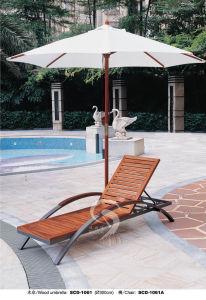 Umbrella (1061)