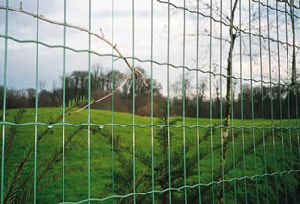 Welded Wire Mesh Fencing S595