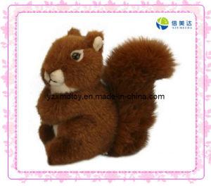 Stuffed Squirrel (XMD-0052C) pictures & photos