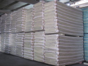 Extruded Polystyrene Foam pictures & photos