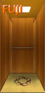Villa Elevator with Elegant Lift Car pictures & photos