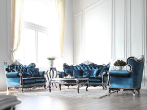 Blue Amber Series classic home furniture sofa (BA-1106-C) pictures & photos