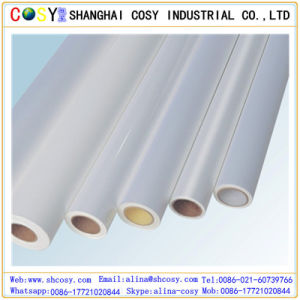 Cold Laminated Film pictures & photos