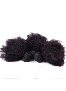 Afro Kinky Curly Human Hair Bundles Hair Extensions pictures & photos