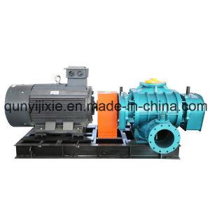 High Pressure Roots Vacuum Pump