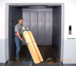 Fjzy-High Quality and Safety Freight Elevator Fjh-16008 pictures & photos