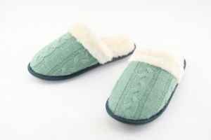 Women′s Indoor Slipper (CWF1141) pictures & photos