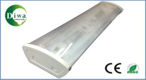 T8 Fluorescent Fitting CE, RoHS, IEC Approval (DW-T8XMX) pictures & photos