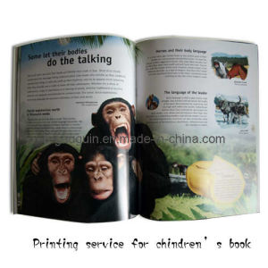 Animal Teaching Book for Kids