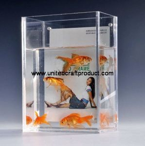 Clear Aquarium Fish Tank