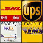 Express Service From China to World pictures & photos