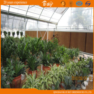 Hot Galvanized Steel Film Covered Multi-Span Greenhouse pictures & photos