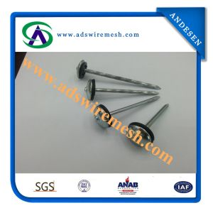 "0.12X1-3/4"" Coiled Roofing Nail for Sale Manufacture in China pictures & photos"