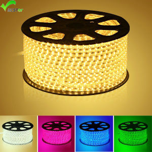 Hot One, High Voltage SMD 5050 LED Strips Light IP68, 60LEDs/M