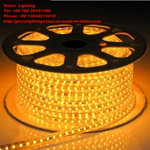 Decoration LED Light High Quality 5050 LED Strip (G-SMD-5050-220V-45) pictures & photos