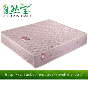 Comfortable Spring Mattress for Two People with Bcc Approved (ZRB-839)
