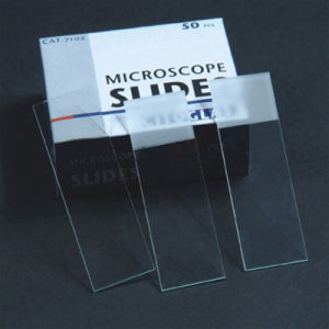 All Types of Glass Medical Prepared Microscope Slides pictures & photos