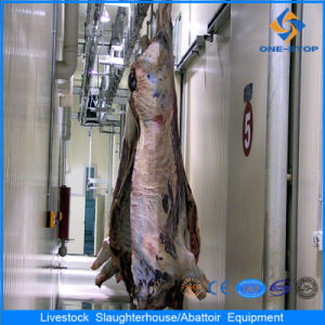 Halal Cattle Slaughterhouse Halal Cow Slaughter Equipment for Livestock pictures & photos