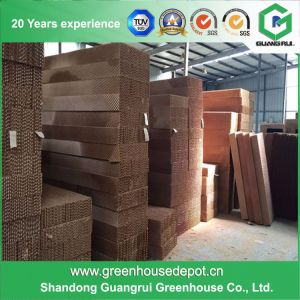 High Efficiency and Low Cost Greenhouse Cooling System for Sale pictures & photos