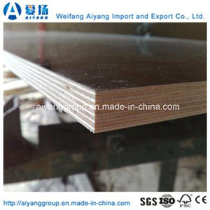 Construction Plywood/Film Faced Plywood with Best Price pictures & photos