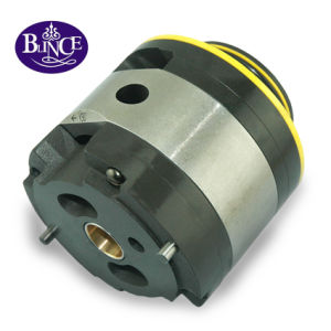 Vickers Vq/V Hydraulic Vane Pump Cartridge Kit pictures & photos
