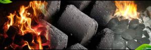 Low Energy Consumption BBQ Briquettes Making Machine pictures & photos