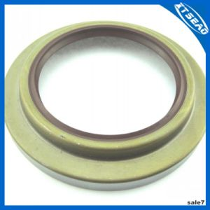 Oil Seal in Tb Type pictures & photos